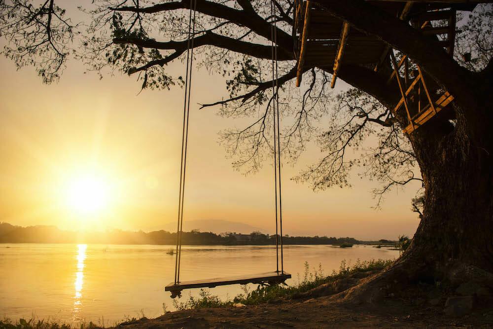 tree swing by a lake
